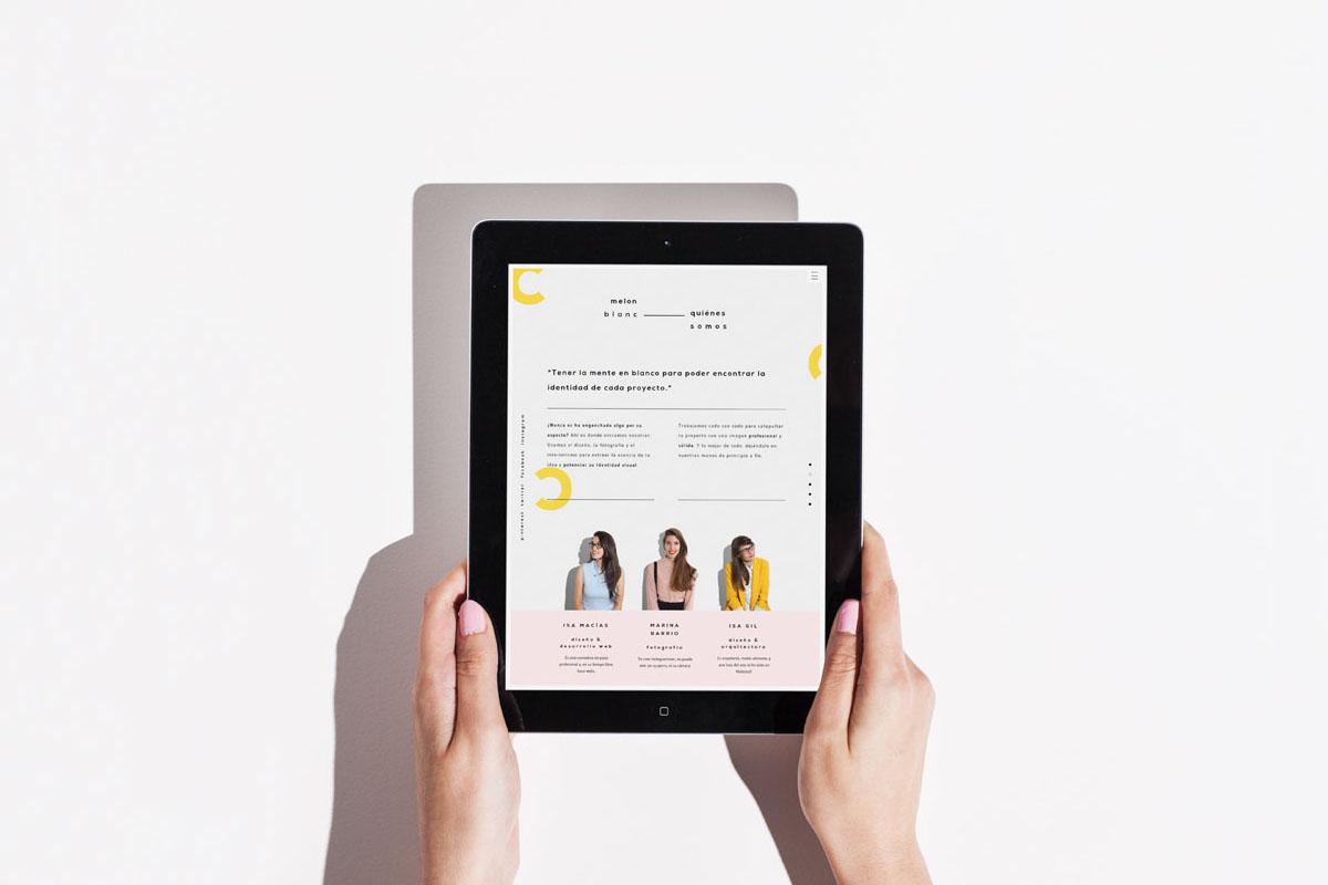 Diseño y desarrollo web - Meon Blanc